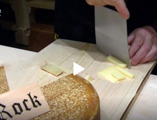 Käse und Schwingung